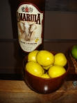 Amarula and Marula fruit.
